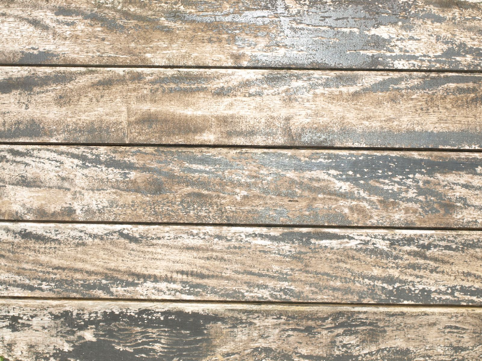 Wood_Texture_A_P4110645
