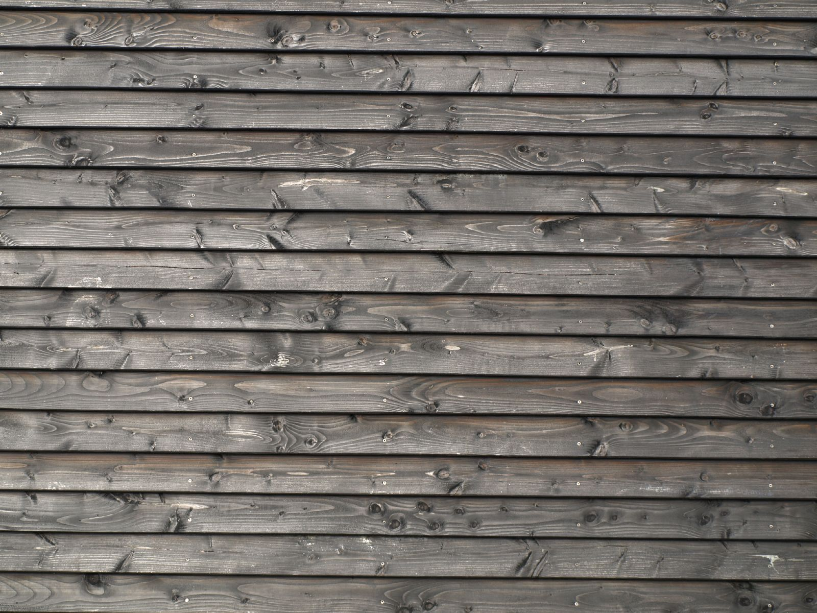 Wood_Texture_A_P4201505