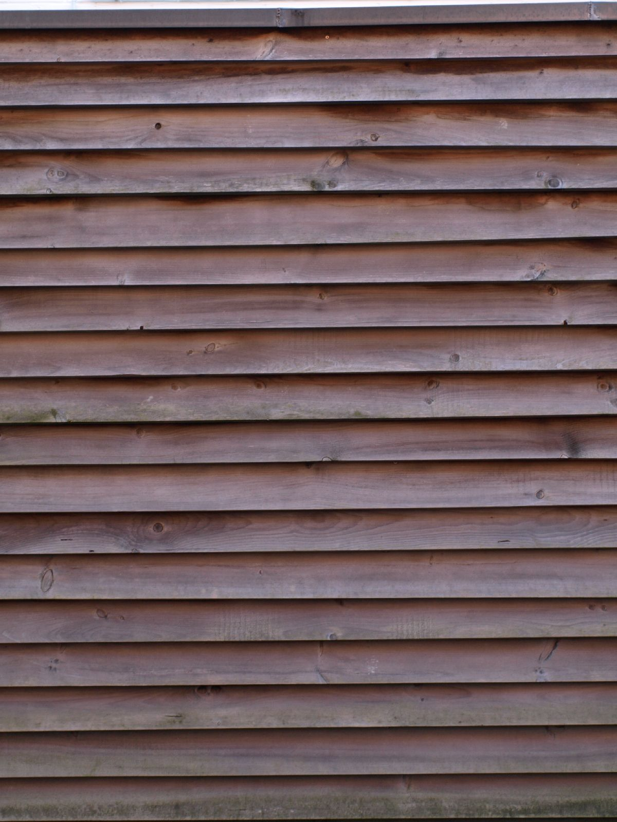 Wood_Texture_A_P4201599