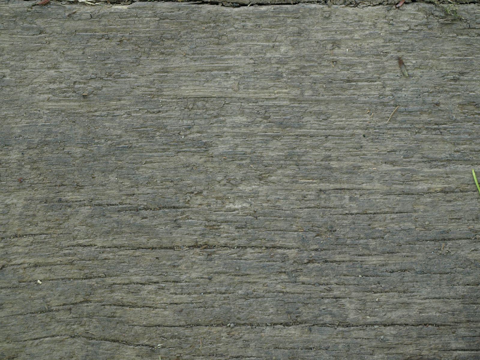 Wood_Texture_A_P5112638