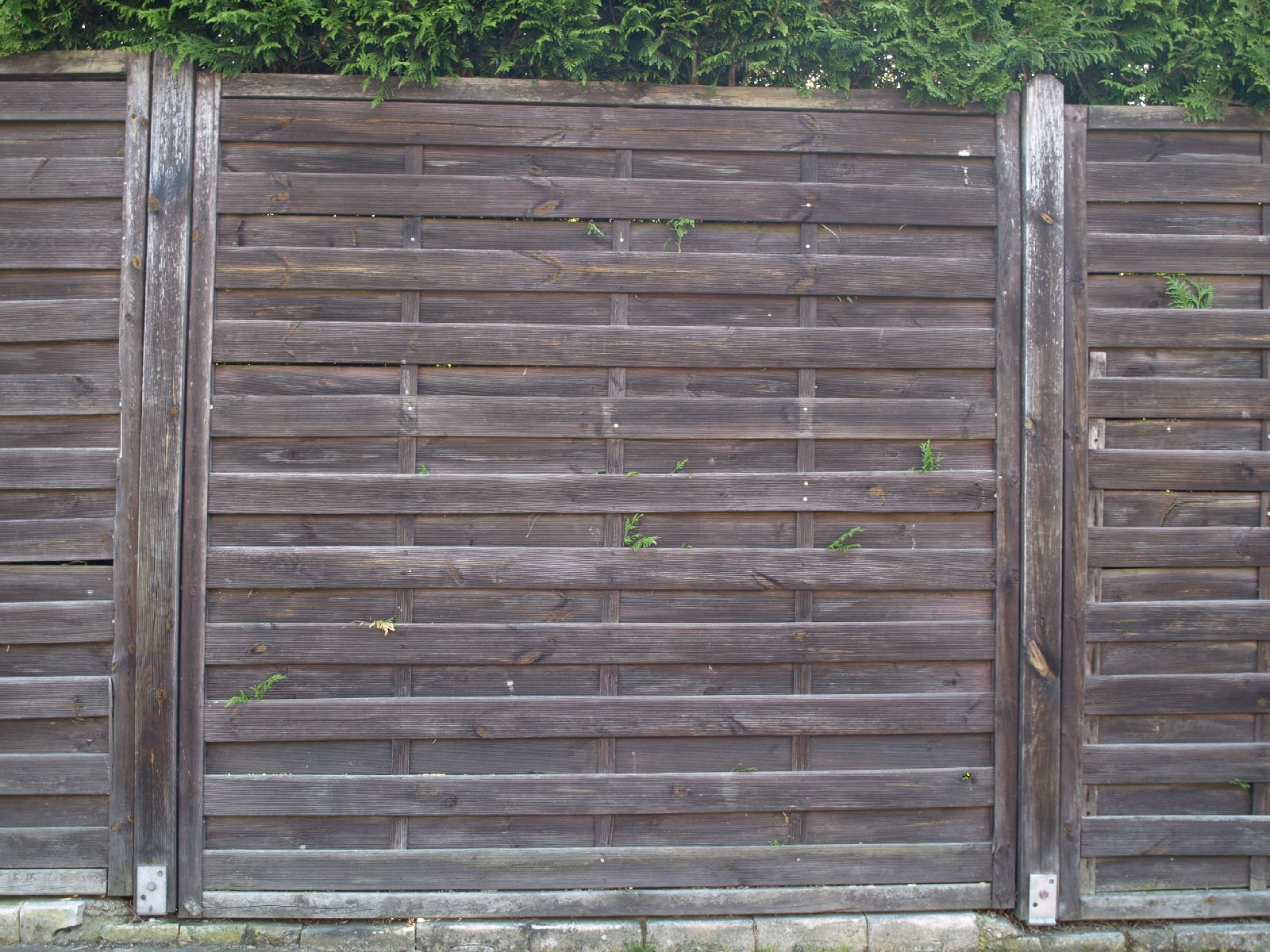 Wood_Texture_A_P5112651