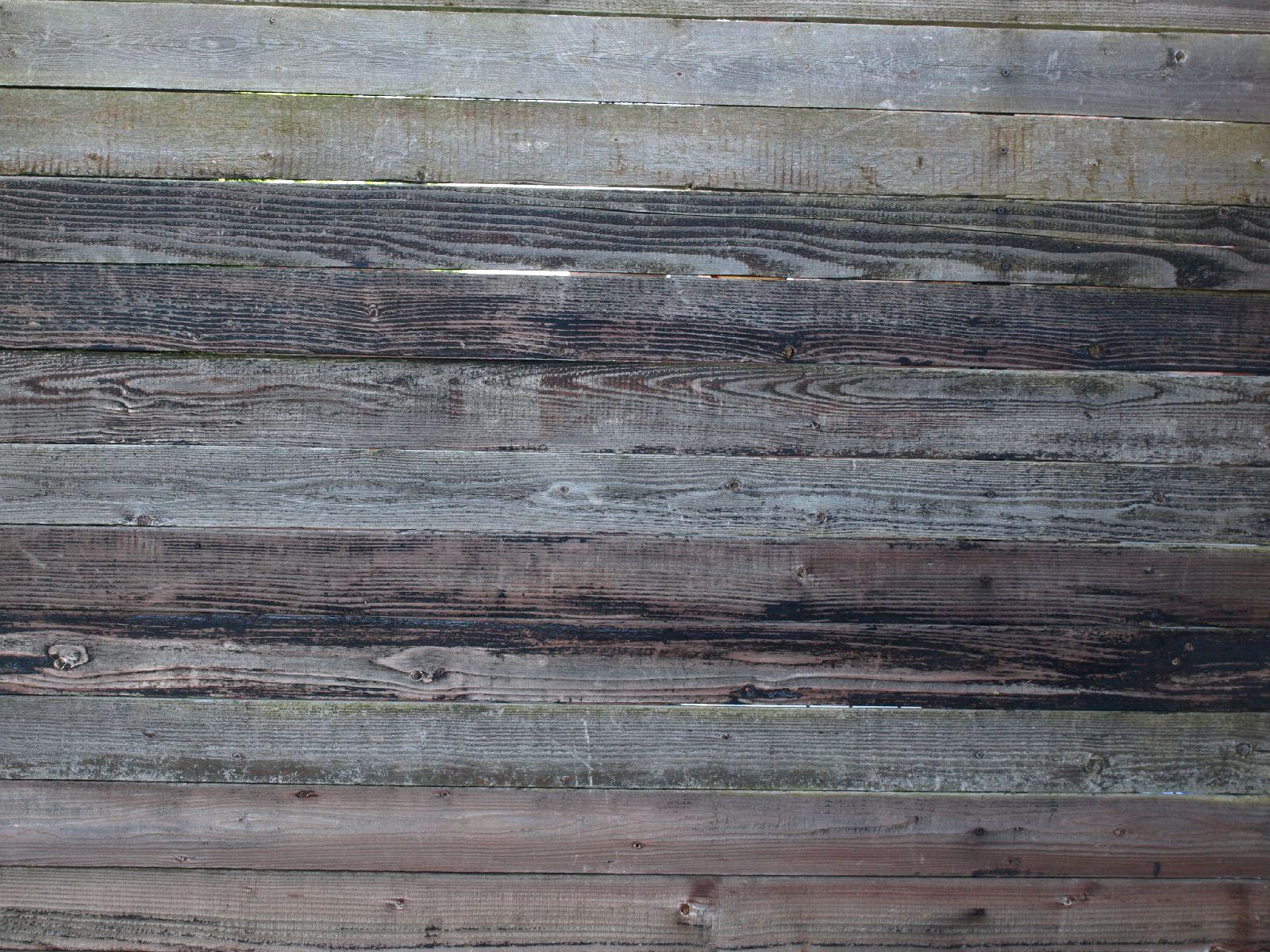 Wood_Texture_A_P6143379