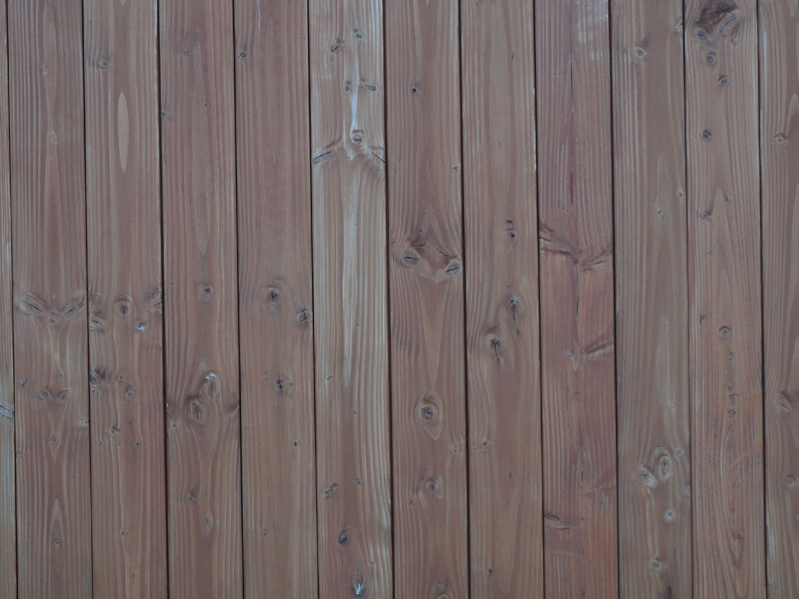 Wood_Texture_A_P7053948