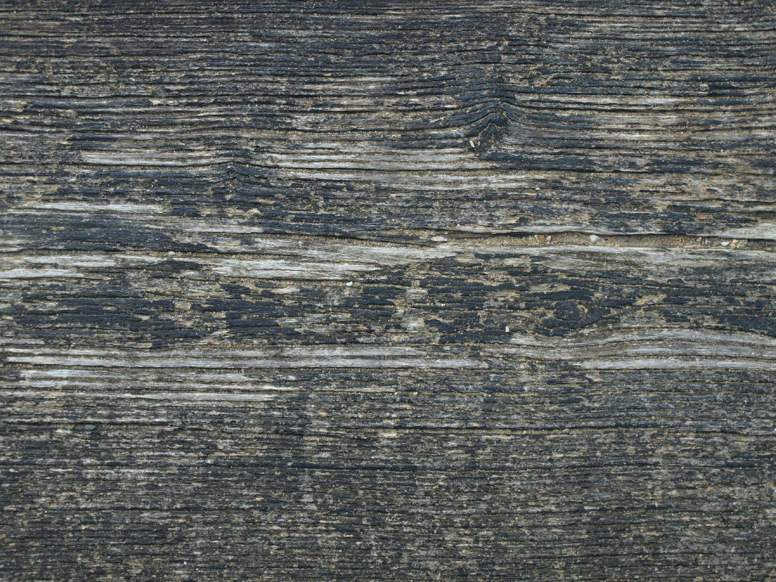 Wood_Texture_A_P8154265