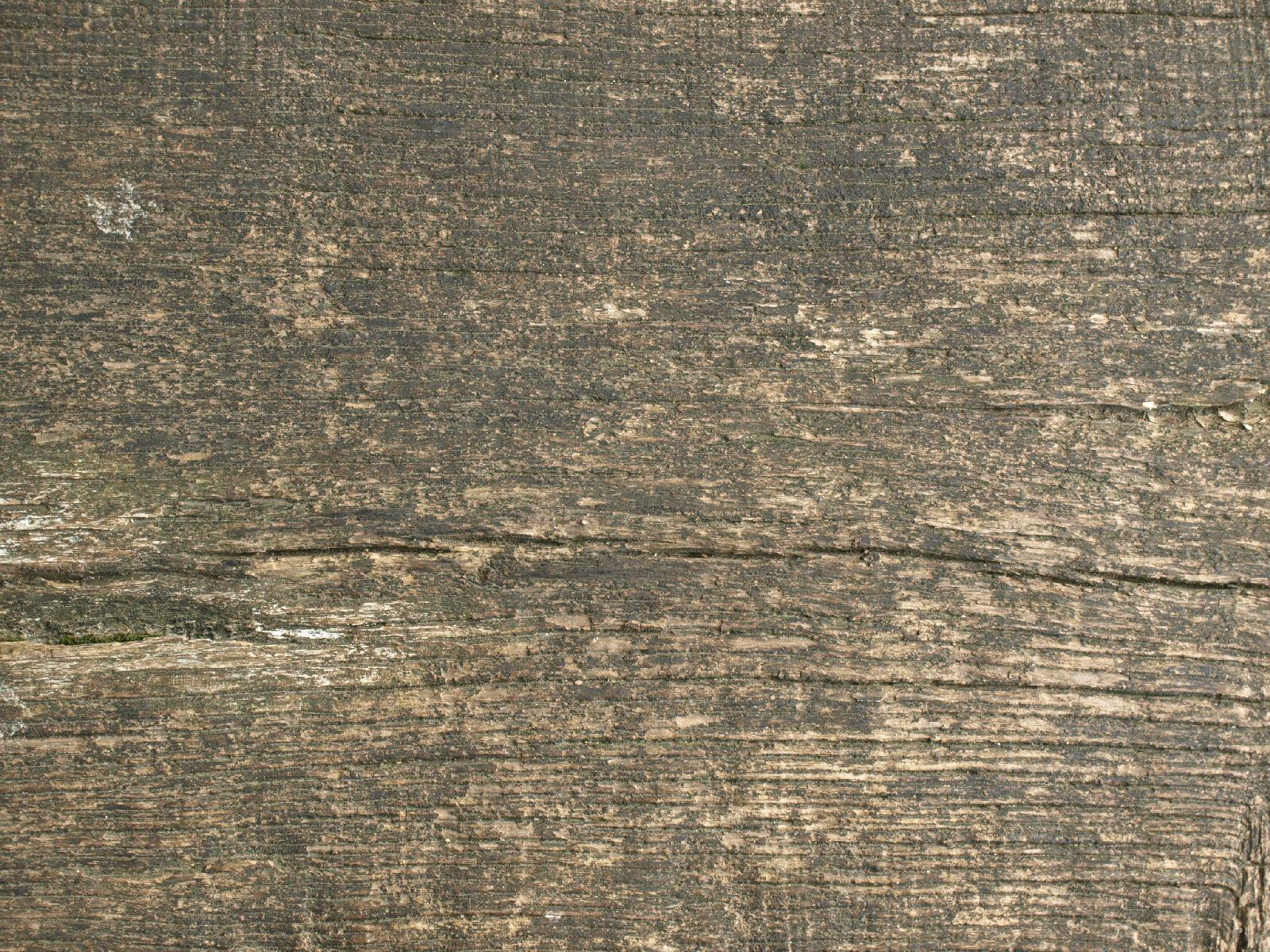 Wood_Texture_A_P8299311