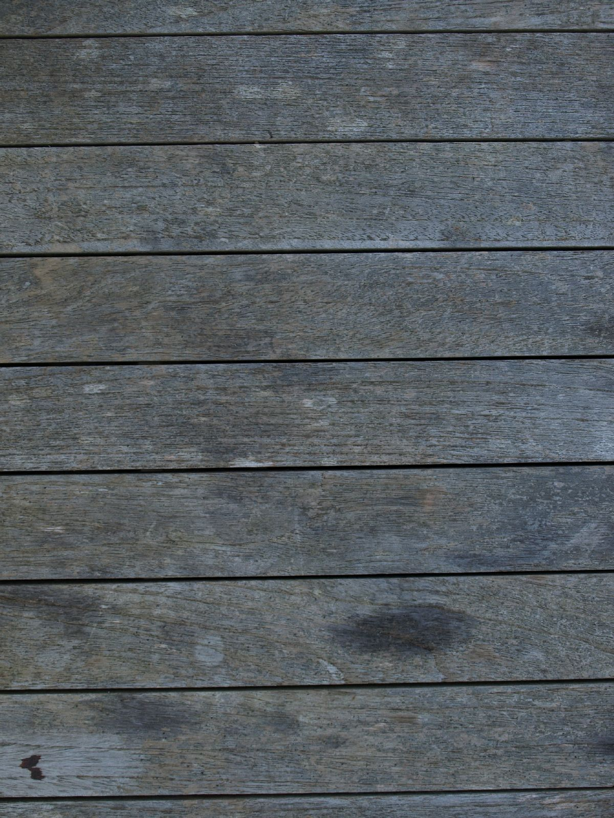 Wood_Texture_A_P9114831
