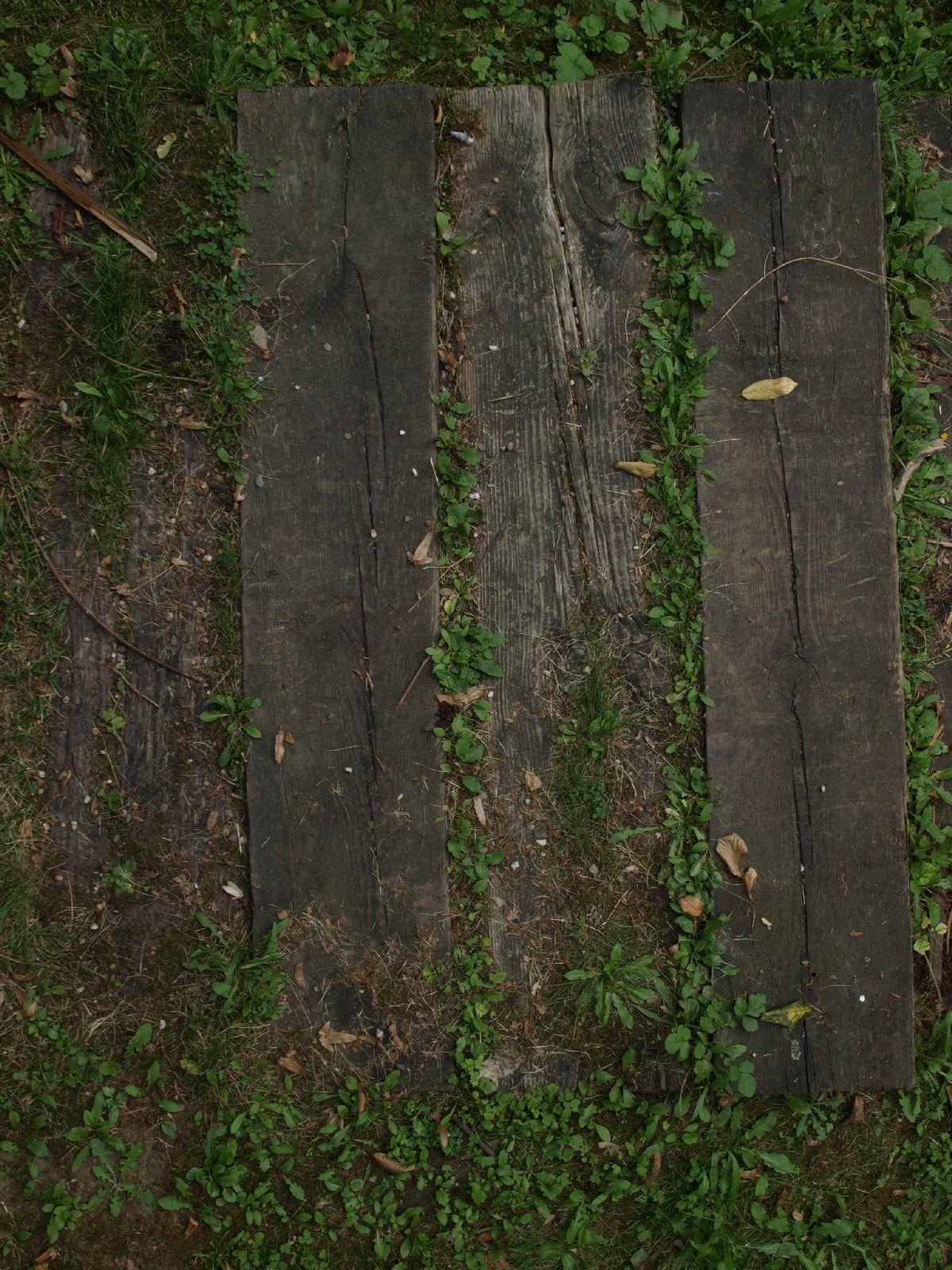 Wood_Texture_A_P9129622