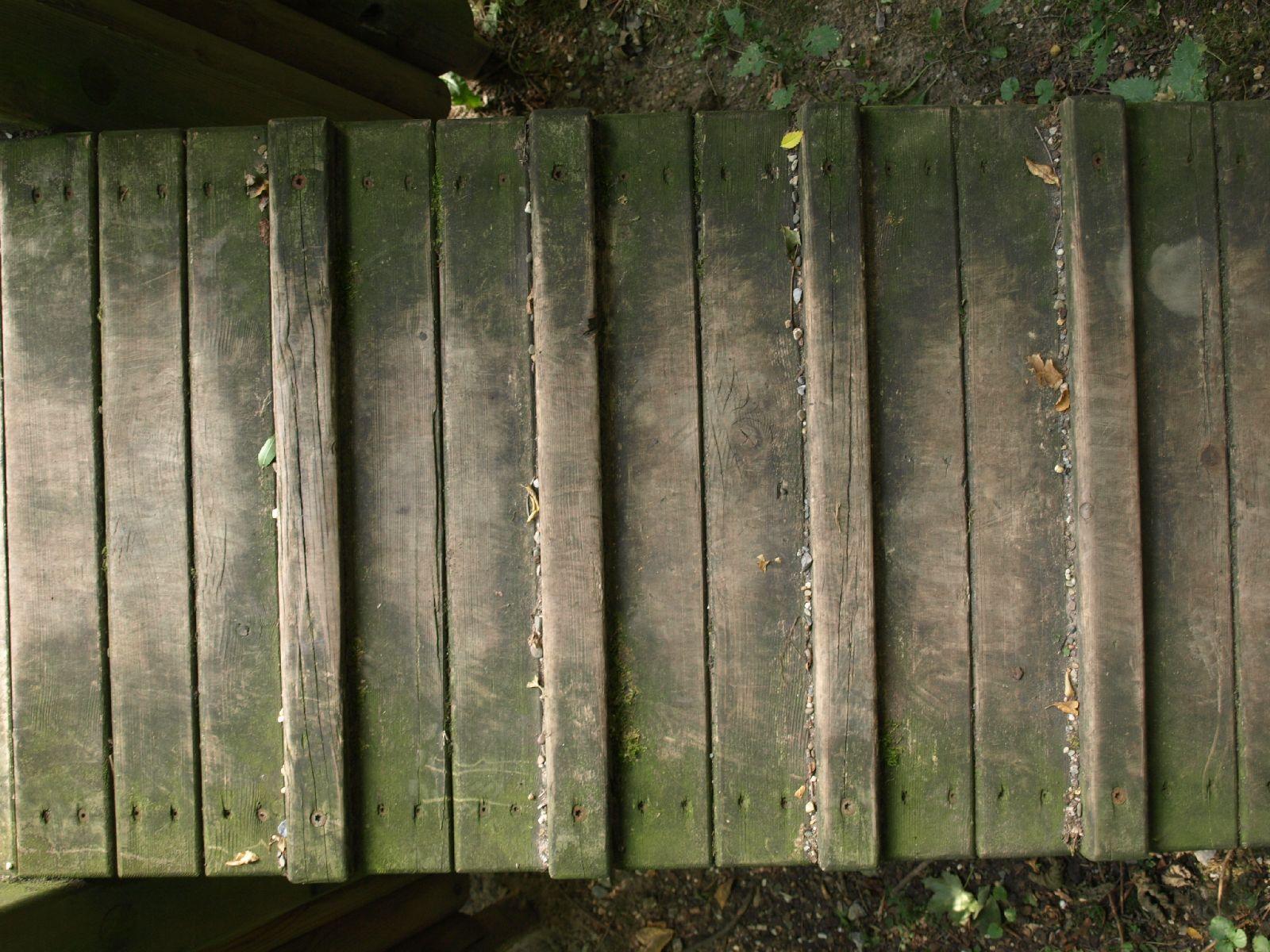Wood_Texture_A_P9129626