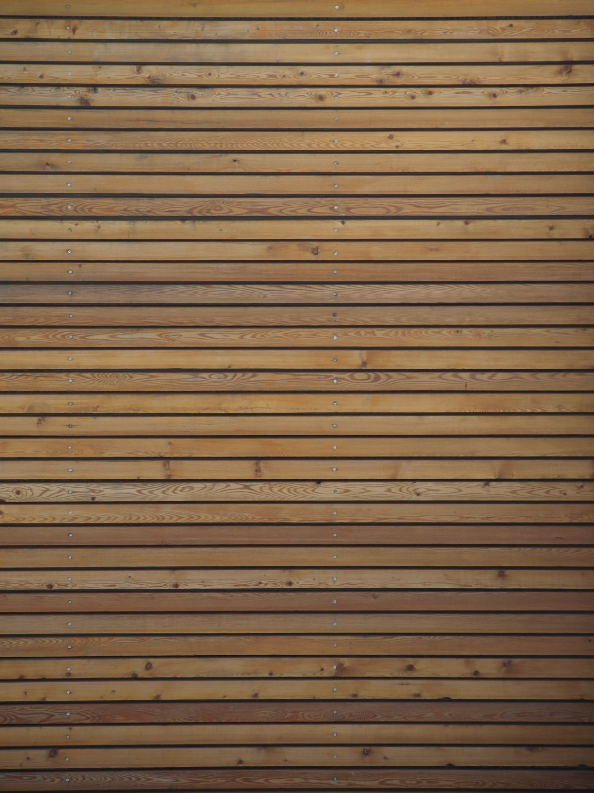 Wood_Texture_A_P9269855