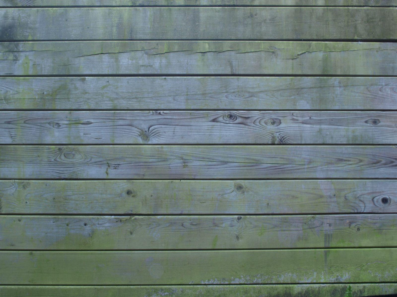 Wood_Texture_A_P9285530