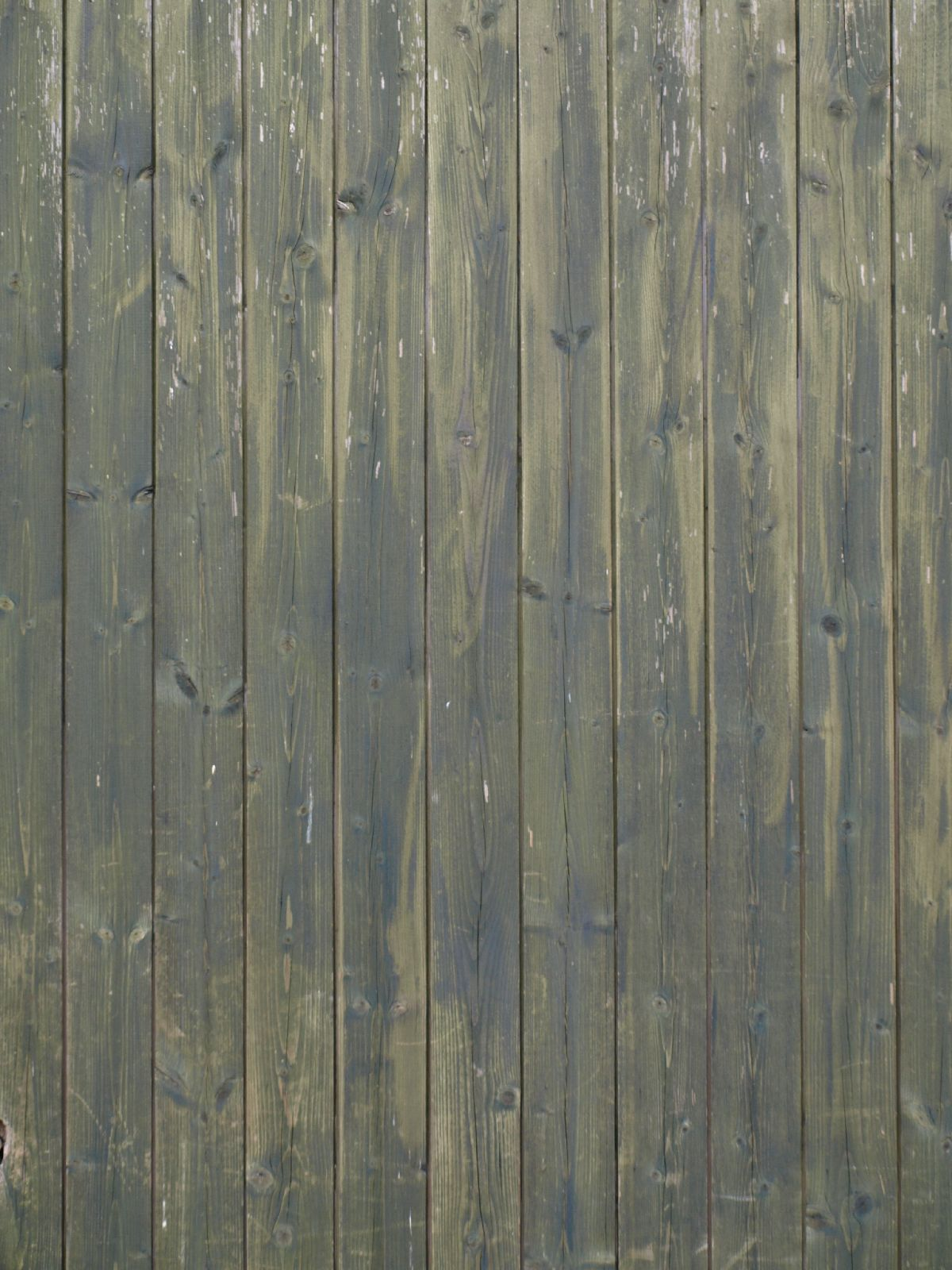 Wood_Texture_A_PA045694