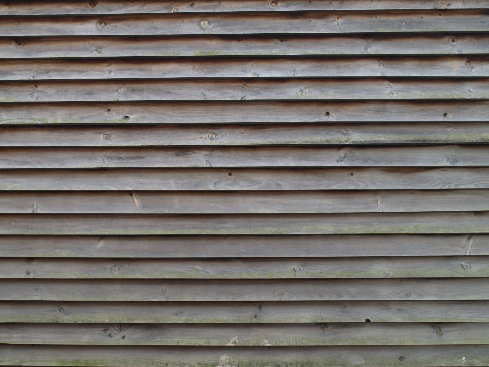 Wood_Texture_A_PA116030
