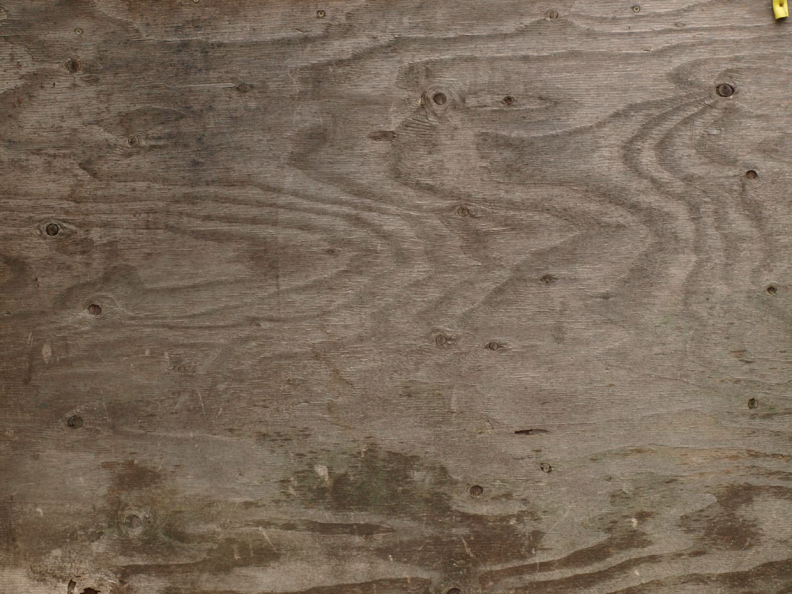 Wood_Texture_A_PA270697