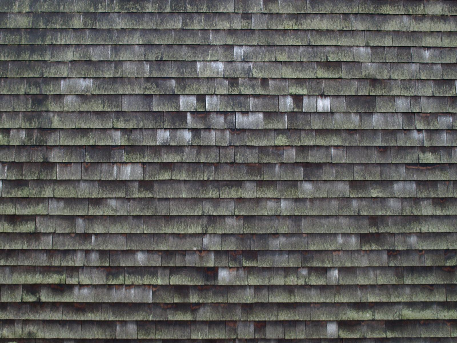 Wood_Texture_A_PB236795