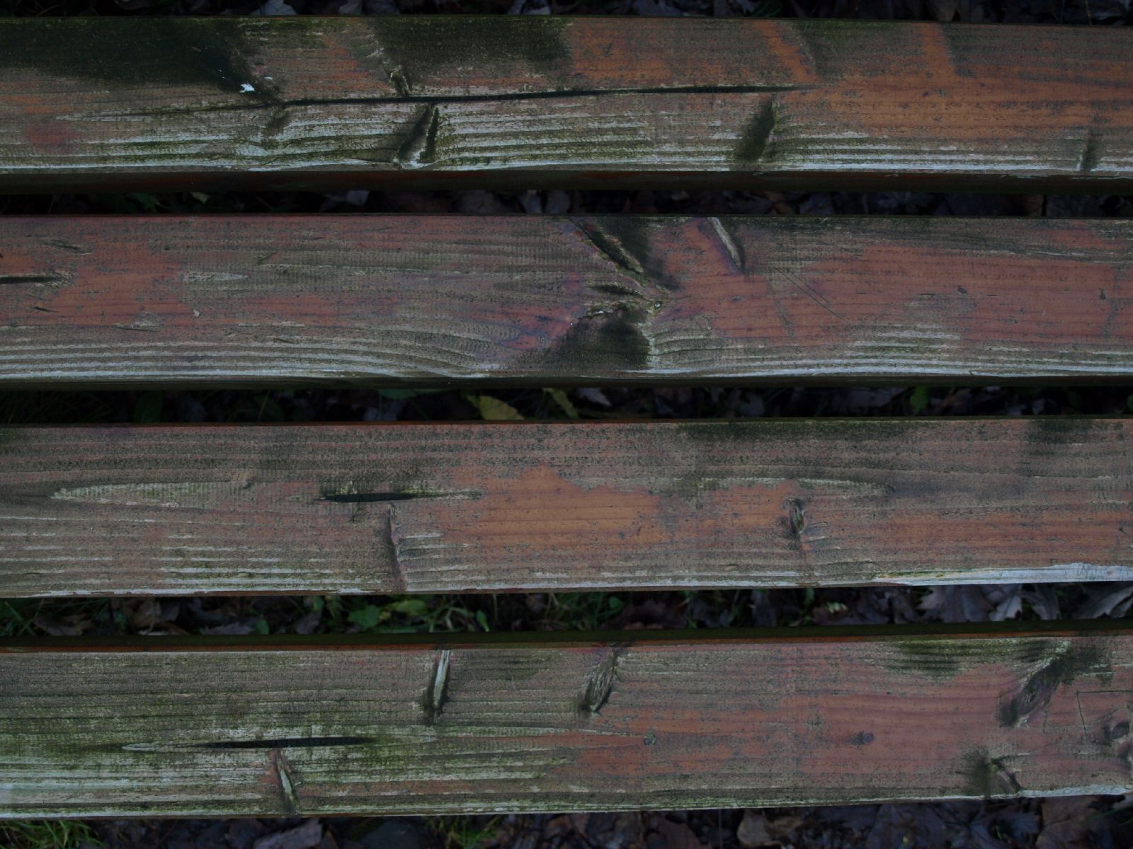 Wood_Texture_A_PC238038