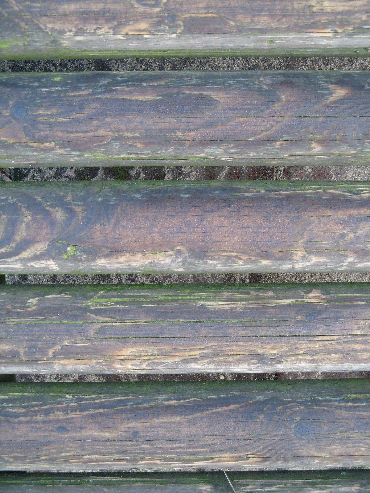 Wood_Textures_B_01060