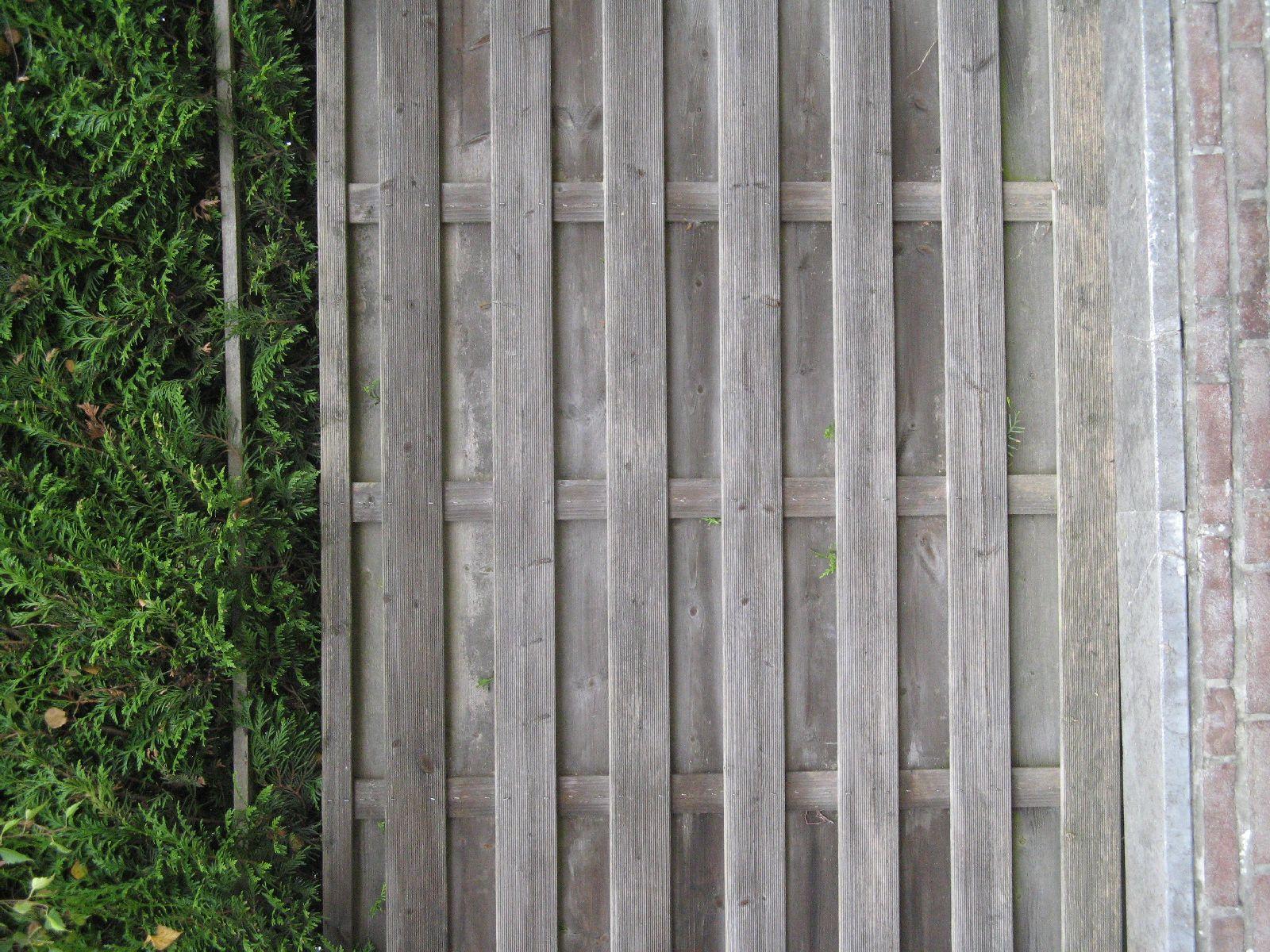 Wood_Textures_B_3834
