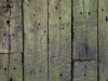 Wood_Texture_A_P4201436