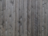 Wood_Texture_A_P6063265