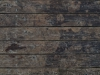 Wood_Texture_A_P8204495
