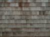 Wood_Texture_A_PB236794