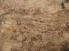 Wood_Textures_B_00434