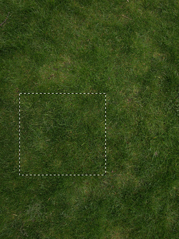 Grass texture selection