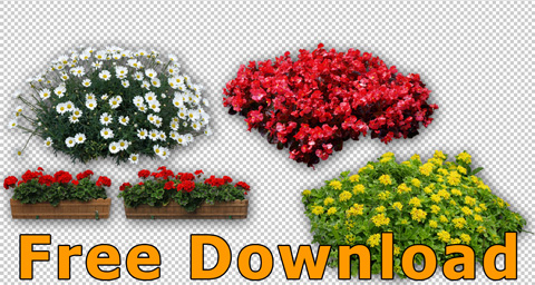 Flower Cut Out Graphics