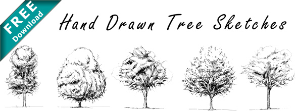 Trees_Drawings_Pencil_Hand_Sketched_Free_Download