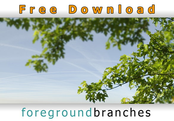 Cutout-Foreground-Tree-Branches-Free-Download