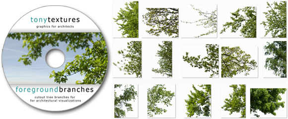 BONUS_Cutout-Tree-Branches-Download