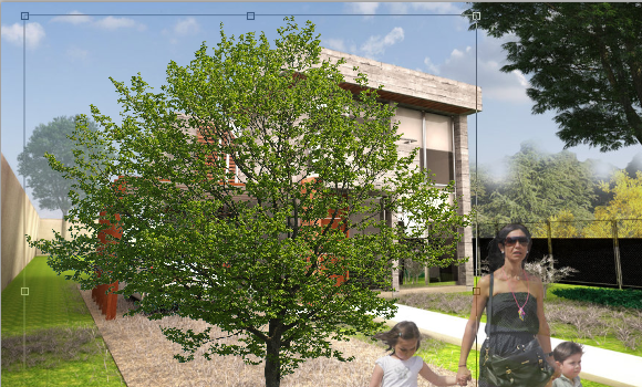 30_Merge-tree-in-architecture-rendering-photoshop