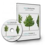 CutoutTrees_V01
