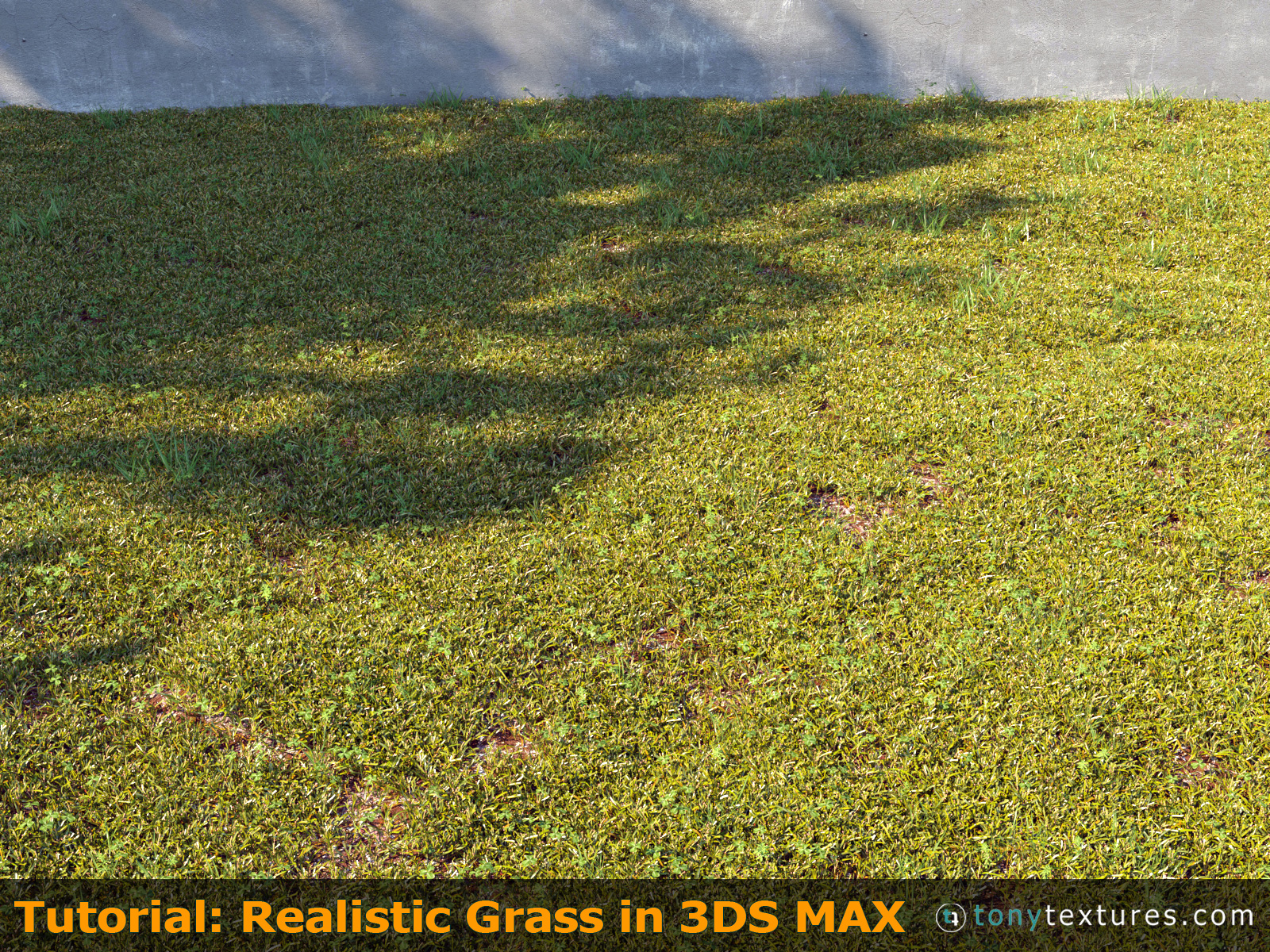 Tutorial How To Make And Render Super Realistic 3d Grass