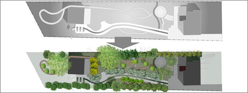 Landscape-Architecture-Tree-Plant-Graphics