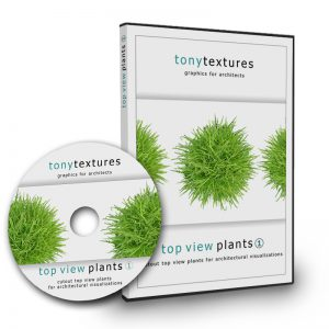 Plant Top View PNG Image Collection