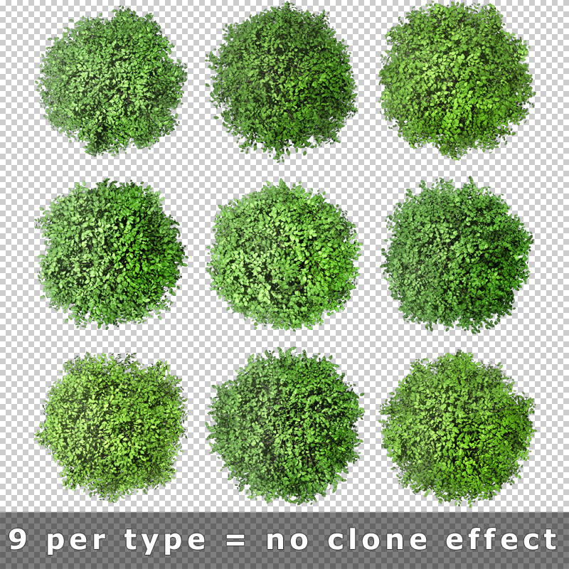 3 tree plant top view architecture png download photoshop
