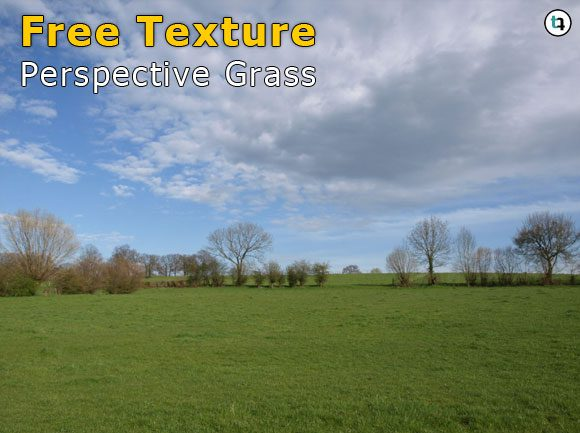 Grass Texture Perspective Free Download