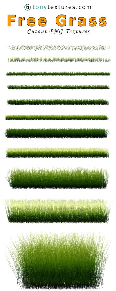 Grass PNG with transparent background Photoshop