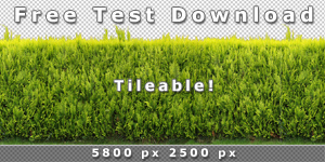 150-300_Free-Test-Download-Tileable-Hedge-Texture-V3.jpg