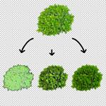 150-photoshop-plant-download-cutout-png-psd