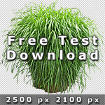 150_Free-Test-Download-VegetationV2.jpg