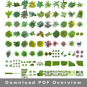 Masked-Plants-Overview-transparent-background-PNG